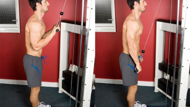 muscler_triceps
